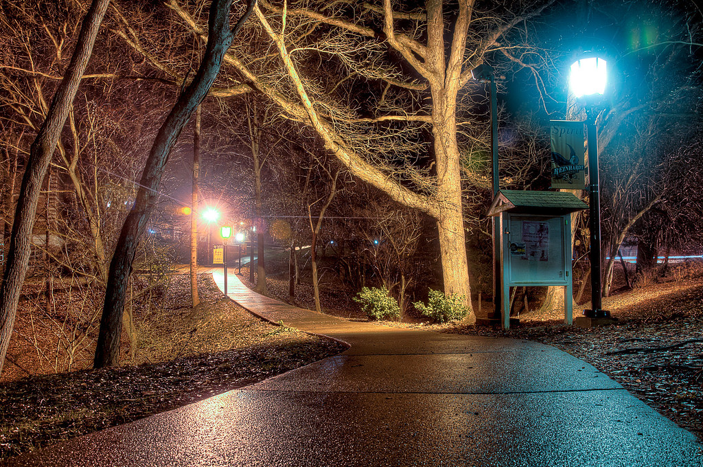 """<h3 style=""""text-align: left;""""><strong>Today's Photo:  Light Along the Path</strong></h3> I have admired this walkway for a long time and finally got the chance to stop.  There is something peaceful to me about this small section.  Is is how well it is lit?  Maybe the mixture of warm and cold lights?  Possibly the closeness of the trees with their branches leaning over the path?  Regardless of the reason, I was drawn to this short section of walkway on the grounds of Reinhardt University in North Georgia.  The night I took this, I found that, deeper into the campus, there are many other paths that were equally as interesting.  - Daryl Clark  Read more at the <a href=""""http://justshootingmemories.com"""" rel=""""nofollow"""">Daily Photography Blog</a> Just Shooting Memories!..."""