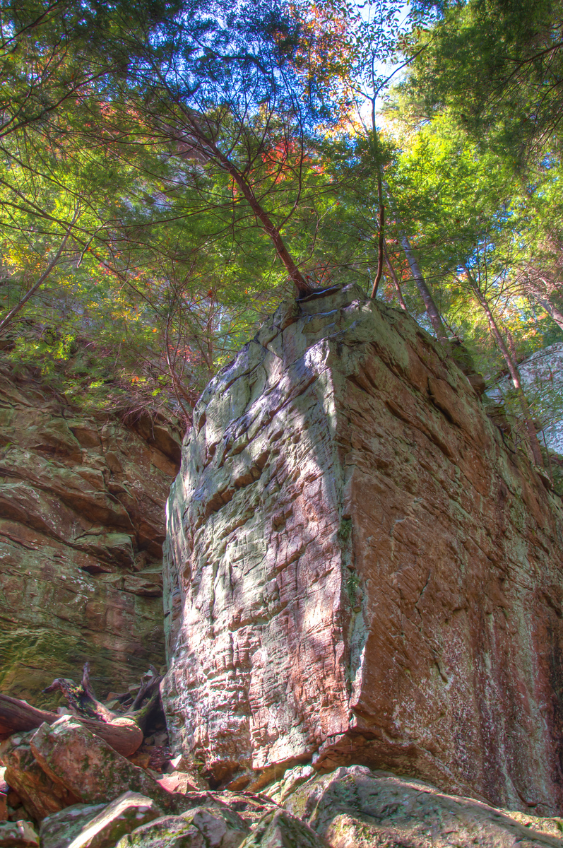 """<h3 style=""""text-align: left;""""><strong>Today's Photo:  The Rocky Point</strong></h3> I was walking the trail to the base of Fall Creek Falls when I ran across this prominence.  I was drawn to it because there were a couple teenagers sitting right at the edge where the tree sticks out.  It reminded me of all the time I spent rock climbing when I was younger.  If I had taken any of my climbing gear, I would have been hard pressed to stay away from this.  As it was, I had to settle with a few photos.  - Daryl Clark  Read more at the <a href=""""http://justshootingmemories.com"""" rel=""""nofollow"""">Daily Photography Blog</a> Just Shooting Memories!..."""