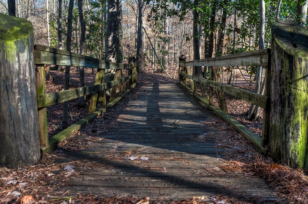 The Foot Bridge