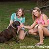Chelsey birthday dogs