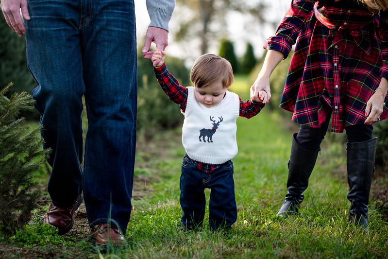 MUNSON FAMILY-SARAH JANE SANDERS WEBB c2017-31