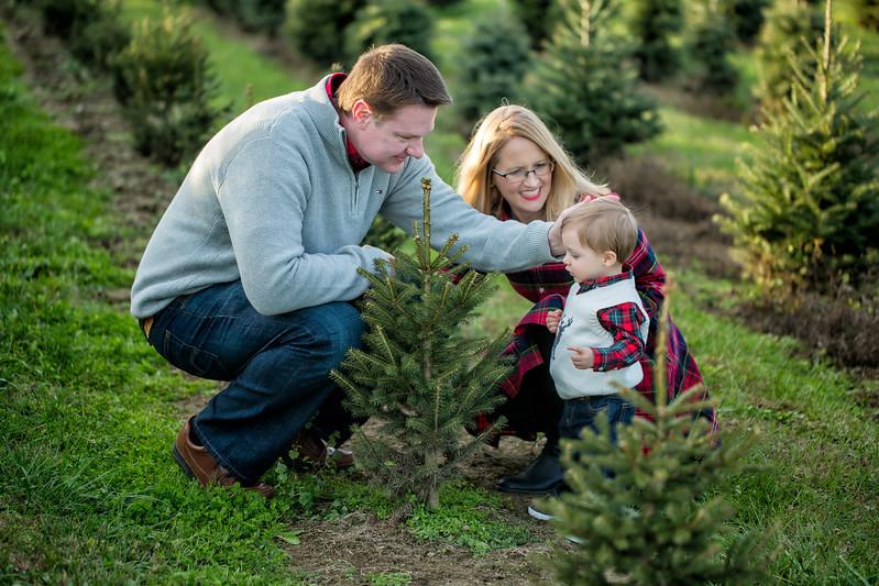 MUNSON FAMILY-SARAH JANE SANDERS WEBB c2017-37