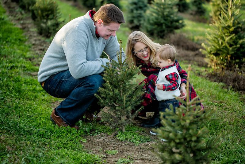 MUNSON FAMILY-SARAH JANE SANDERS WEBB c2017-38