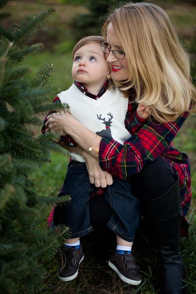 MUNSON FAMILY-SARAH JANE SANDERS WEBB c2017-44