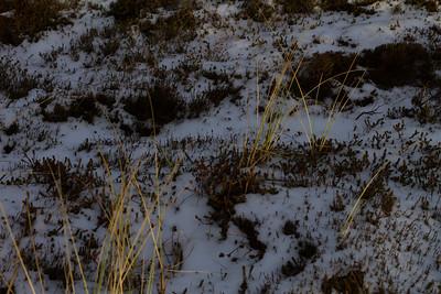 sol, snø og fuldmåne