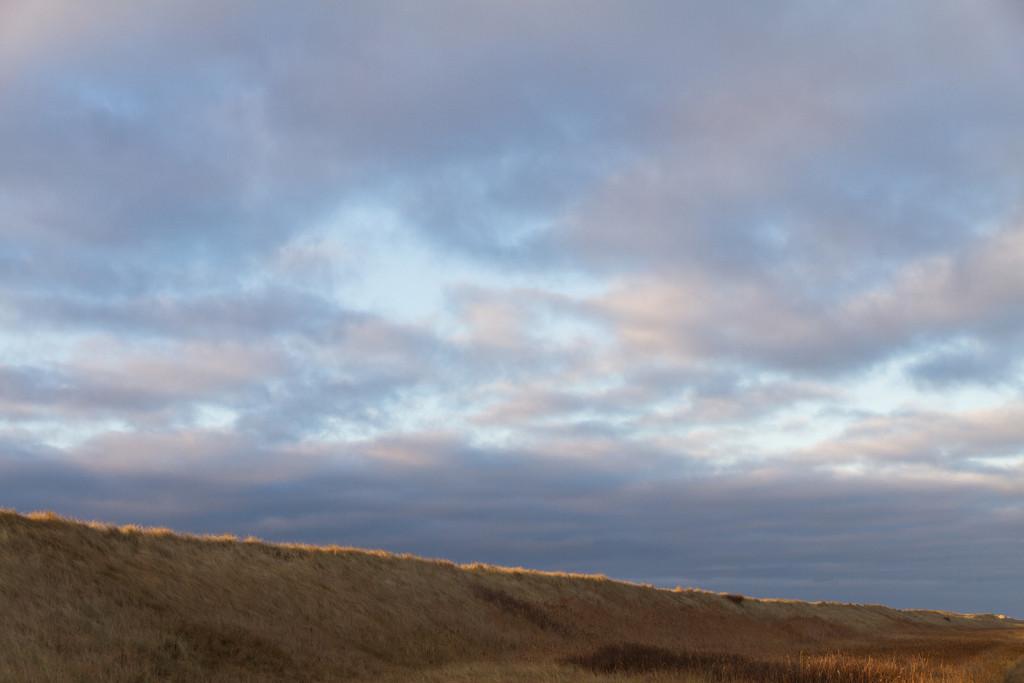Bøvling klit. Dec 14 2010 @ 14:46