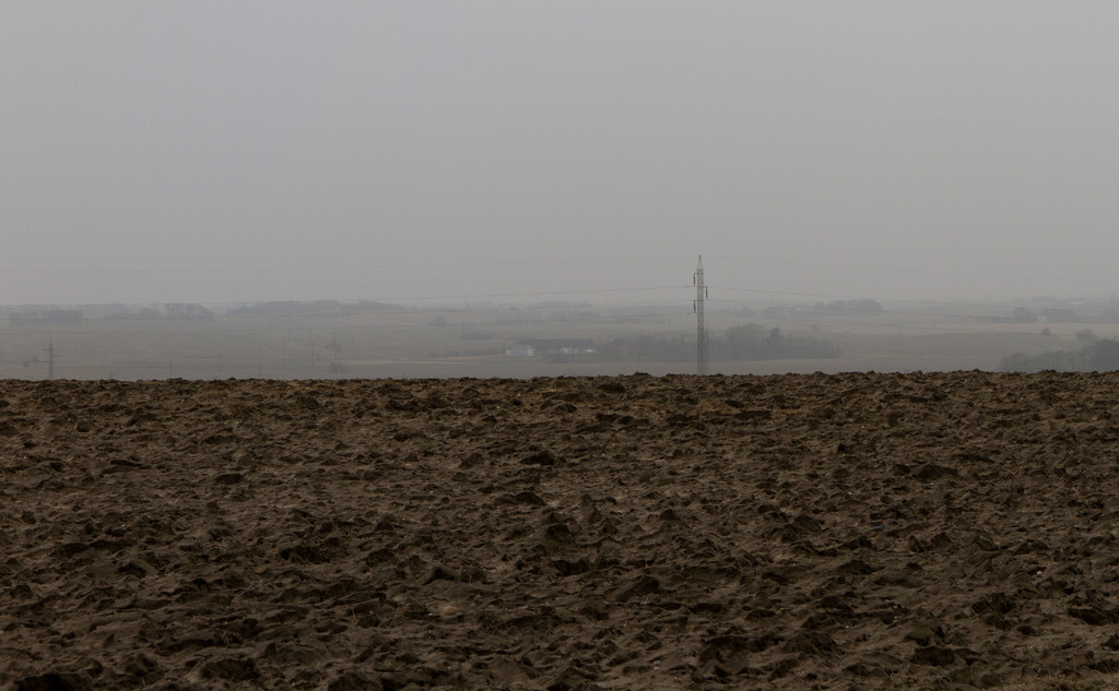 Nørre Nissum. March 17 2012 @ 11:16