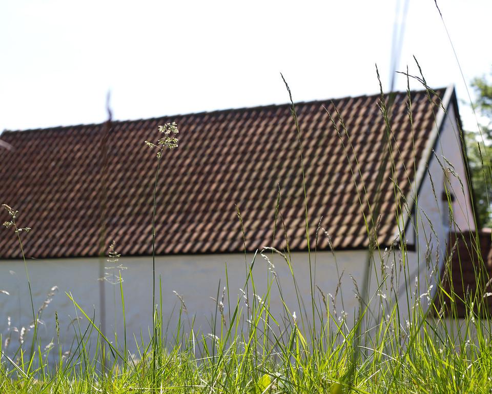 Venø, Struer. June 2 @ 12:29