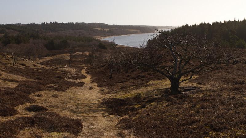 Ydby Hede. March 19 @ 09:57<br /> Skibsted Fjord