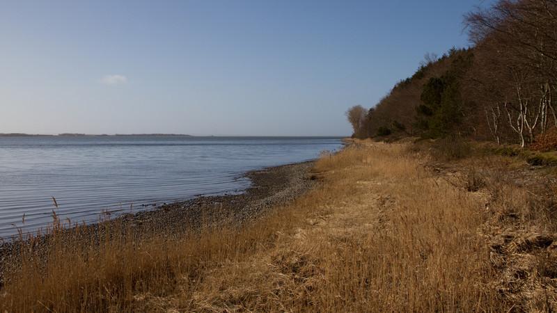Ydby Hede. March 19 @ 10:07<br /> Skibsted Fjord -- Nissum Bredning