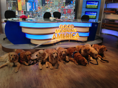 K-9 Comfort Dogs Take Manhattan; Next Stop - Boston