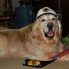 Hockey Howe Go Blackhawks
