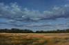 Landscape-Brathwaite, 24x36p-2 JPG