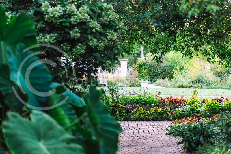 The Gardens at Kansas State University, located at 1500 Denison Avenue, Manhattan, KS. (Cindy Castro   Collegia Media Group)