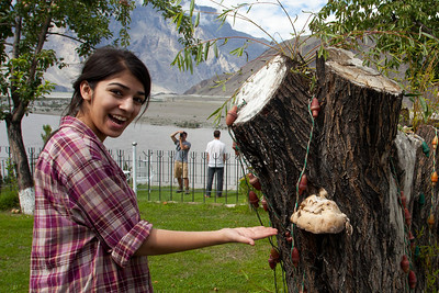 Meesha points out a mushroom.  You can also spy jeff taking a picture in the background!