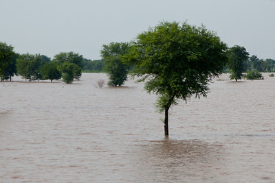 The Punjab has five rivers flowing through it and can become one big flood plain.