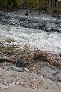 A flooded stream in Shigar.  Goat.