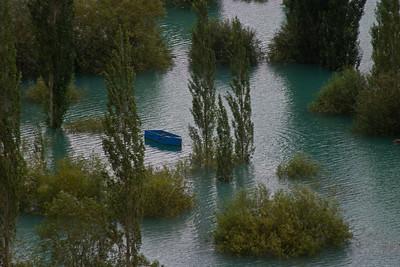 Submerged groves near the lake's edge.