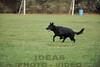 CAT 11-16 Morning-293