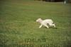 CAT 11-16 Morning-429