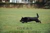 CAT 11-16 Morning-295