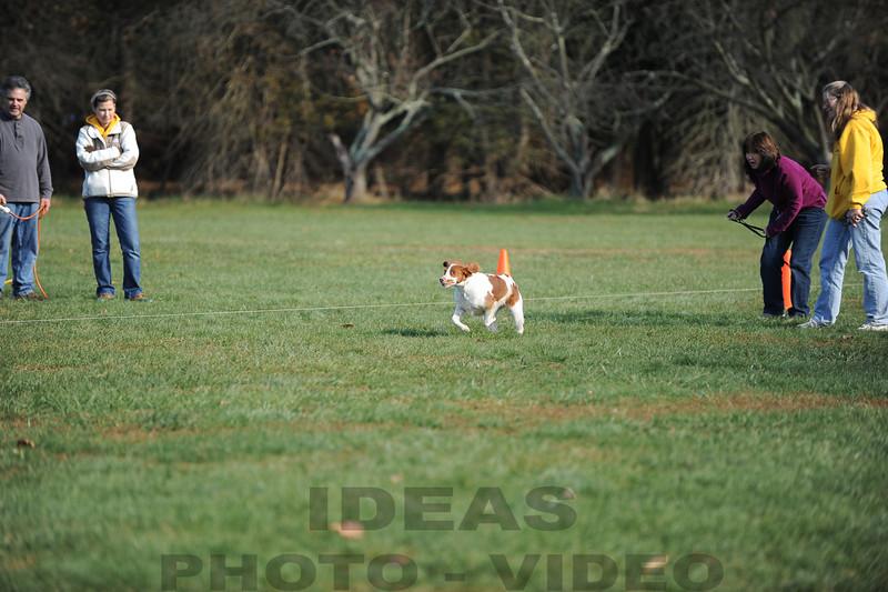 CAT 11-16 Morning-393