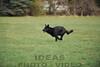 CAT 11-16 Morning-291