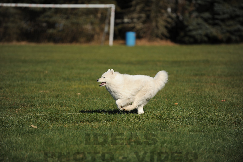 CAT 11-16 Morning-484