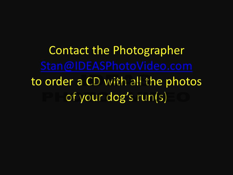 Contact the Photographer