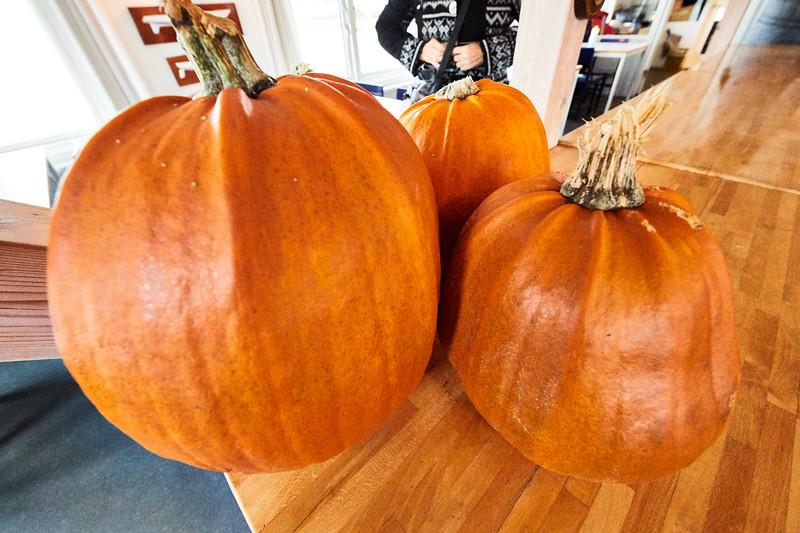 Klar til Halloween - på dansk: Allehelgensaften