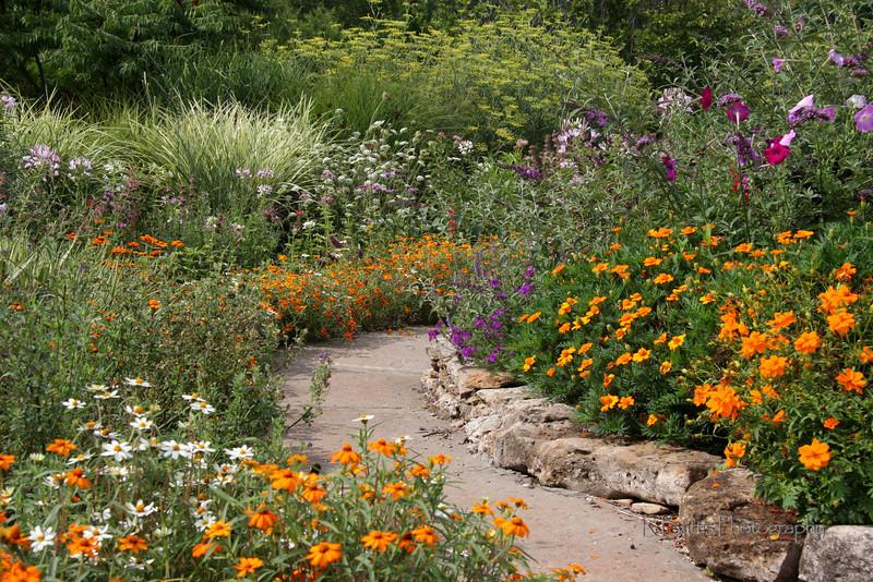 Flower Garden path