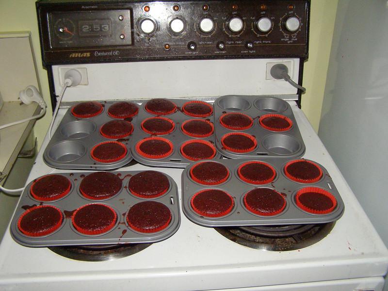 Bloody muffins