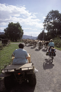 © RobAng 1989, New Zealand by bicycle