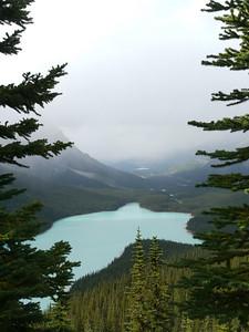 Payto Lake (Bow Pass), Banff-/Jasper National Park - Icefields Parkway, 810.7 m.ü.M., Alberta, Kanada