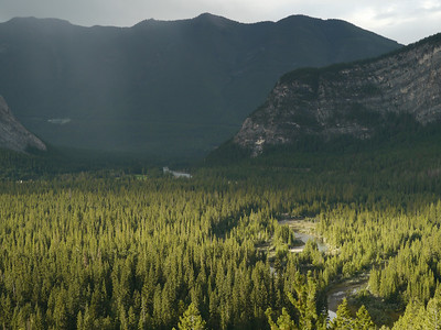 © RobAng 2009, Jasper, Canada