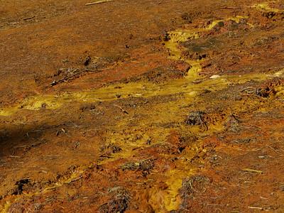 Paint Pots (Kootenay), Kootenay National Park, 882.6 m ü.M., British Columbia - Upper Columbia Region, Canada