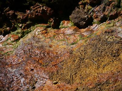 Paint Pots (Kootenay), Kootenay National Park, 887.1 m ü.M., British Columbia - Upper Columbia Region, Canada