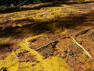 Paint Pots (Kootenay), Kootenay National Park, 887 m ü.M., British Columbia - Upper Columbia Region, Canada