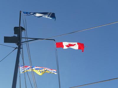 Cortes Island, 19.7 m.ü.M., British Columbia, Kanada