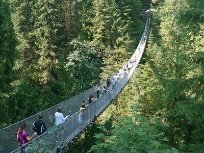 North Vancouver Capilano River, North Vancouver Capilano Suspension Bridge, 101 m.ü.M., British Columbia, Kanada