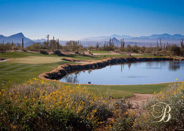 Ritz Carlton - Dove Mountain Course.  Home of the Accenture Match Play.  Wickedly beautiful...