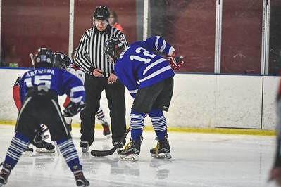 Leafs-3