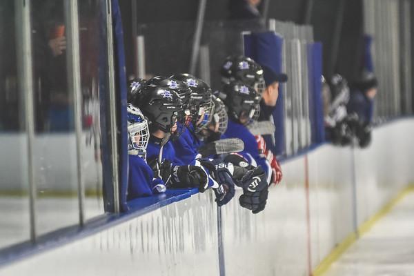 Leafs-13