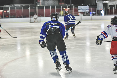 Leafs-5
