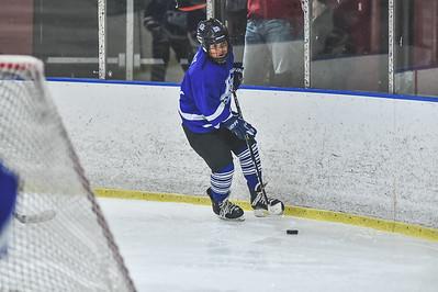 Leafs-17