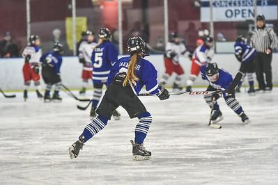 Leafs-12