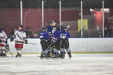 Leafs-15