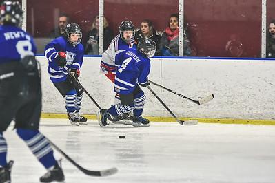Leafs-9
