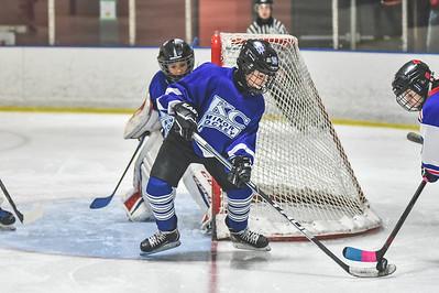 Leafs-18