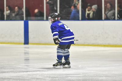 Leafs-8